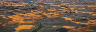 fields of gold, Palouse, Steptoe Butte, Palouse in August, Palouse wheat fields