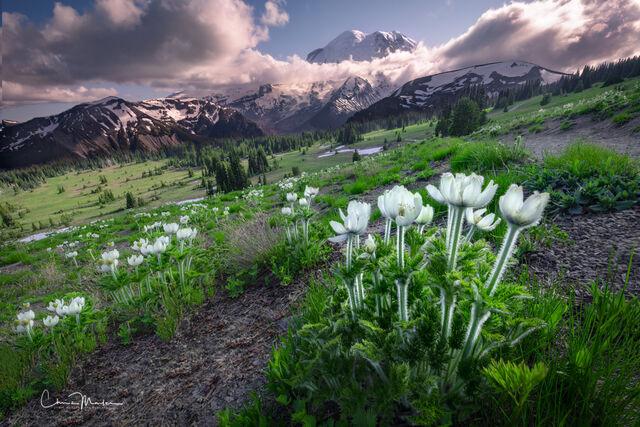 Mountain Peaks | Mountain Ranges