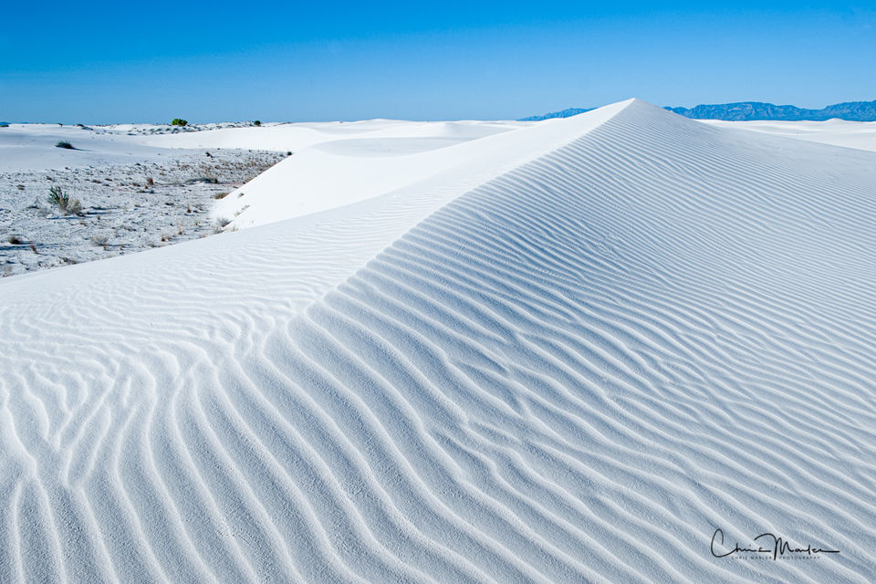 straight to the top, White Sands New Mexico, White Sands National Park, White Sands National Monument, gypsum crystals