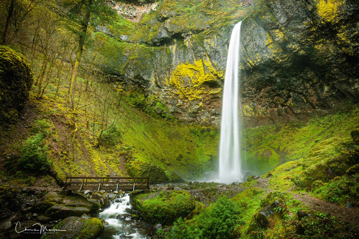 The Columbia River Gorge scenic area outside Portland is a waterfall lovers paradise.   Several dozen waterfalls reside along...