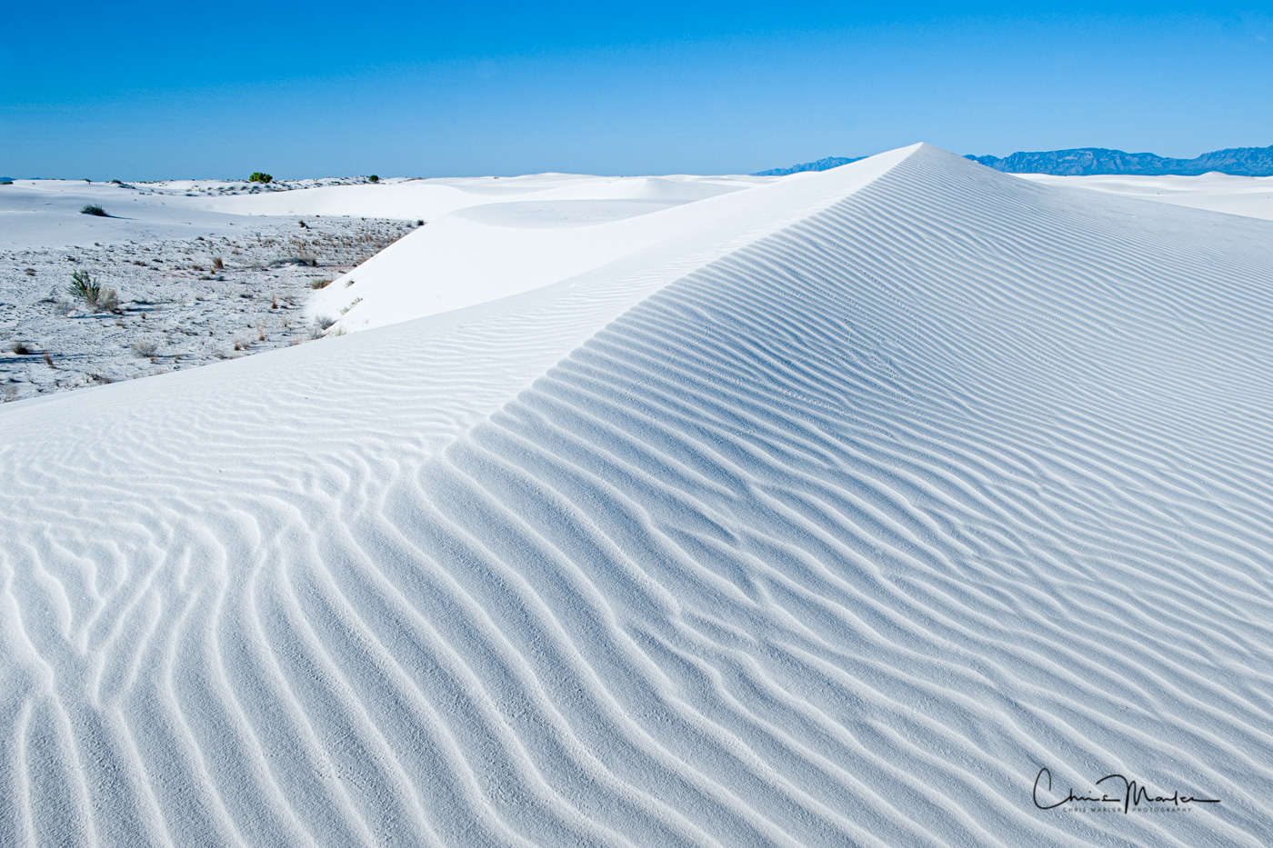 White Sands New Mexico is the most impressive and jaw-dropping series of sand dunes in the country in my opinion. This area was...
