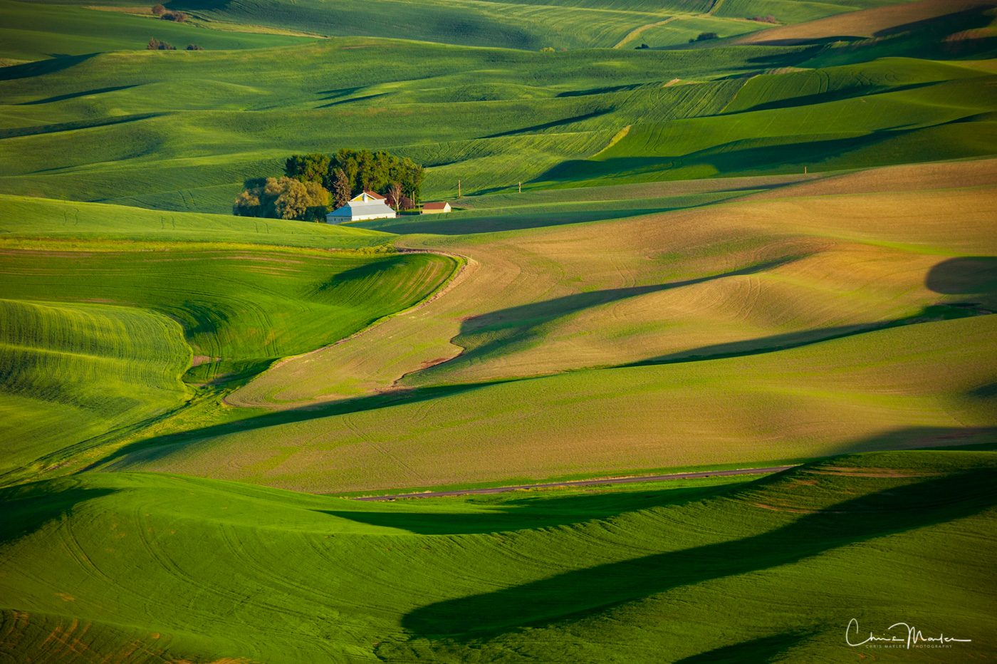 land waves, Palouse, Steptoe Butte, Steptoe Butte State Park, photo
