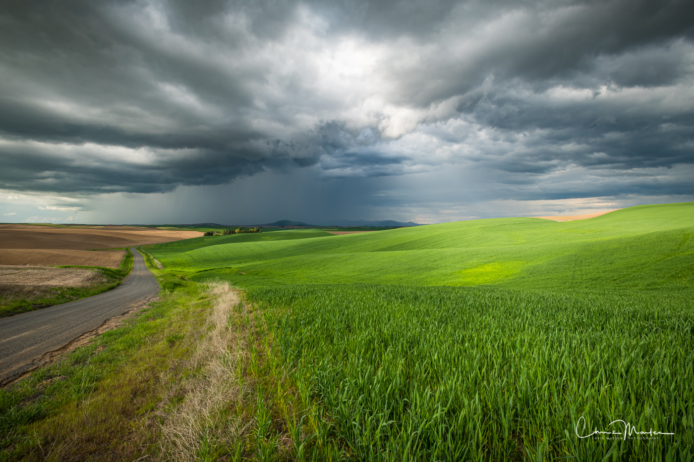 Palouse, Washington, storm, wheat, fields, backroad, sunbeam, photo