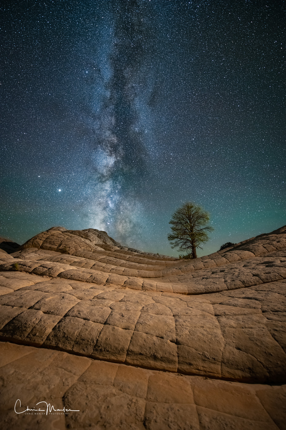 These Navajo Sandstone rock ledges at White Pocket Arizona lead you to the top of a ridge and this lone pine tree.  The Milky...